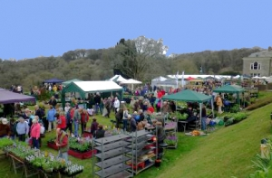 Cornwall Flower Show, Bocconoc